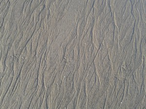 ridules de sable