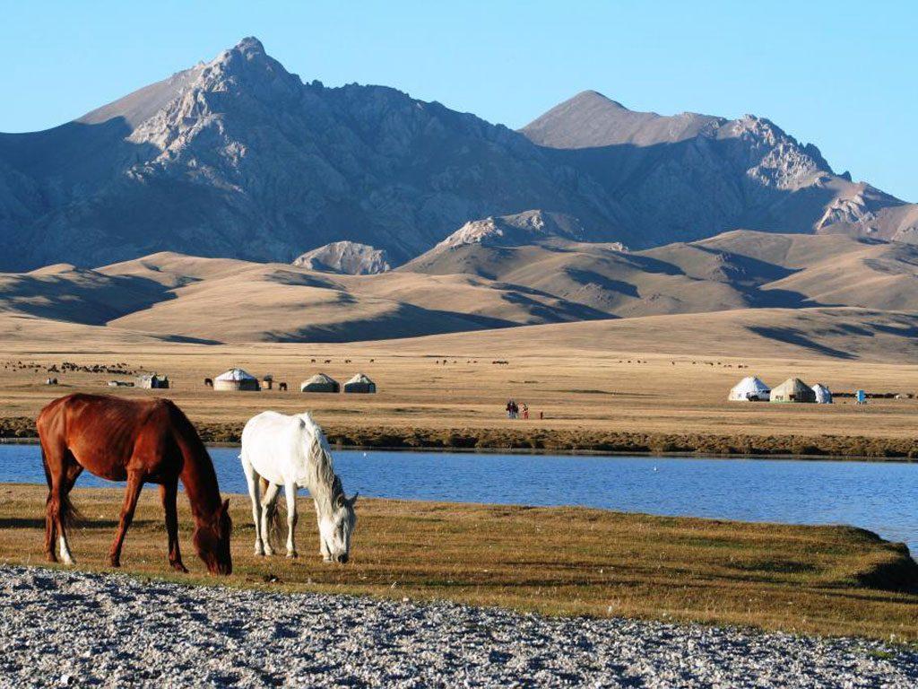 kirghizistan paint